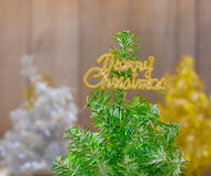 Three colored Christmas trees Royalty Free Stock Photography