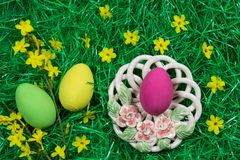 Three colorful Easter eggs, decorative bowl and yellow flowers in green artificial grass. stock image