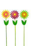 Three colorful artificial flowers on white background Stock Images