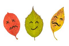 Three colorful autumn leaves with face emotions. Black marker on the red, green and yellow leaves. Isolated on white background stock image