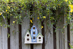 Three colorful birdhouses on old fence with yellow flowers Royalty Free Stock Images