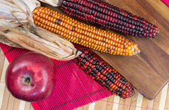Three colorful corns and a dark red apple on a wooden board Royalty Free Stock Photo
