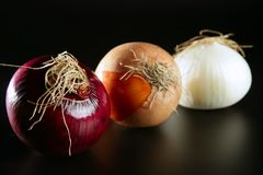 Three colorful different onion Stock Photos