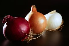 Three colorful different onion royalty free stock photography