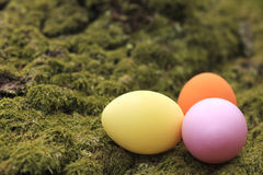 Three colorful easter eggs Stock Photos