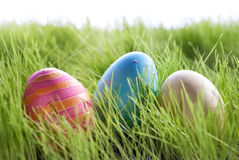 Three Colorful Easter Eggs On Green Gras Stock Images