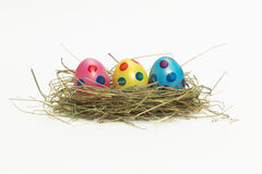 Three colorful Easter Eggs in a nest Stock Photography