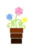 Three colorful fan flowers in flowerpot Royalty Free Stock Photo