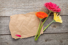 Three colorful gerbera flowers with paper for copy space Royalty Free Stock Photography