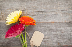Three colorful gerbera flowers with tag Stock Image