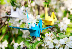 Three colorful paper cranes. Three origami paper cranes: yellow, white and blue are sitting on the branch of blooming tree. One in focus and another are not stock photography