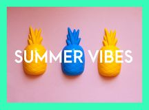 Three colorful pineapples on pink background with text summer vibes Royalty Free Stock Photos