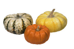 Three colorful pumpkins on white Stock Photography