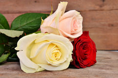 Three colorful roses on a wooden background. Three roses: red, white, pink lie on a wooden surface Royalty Free Stock Image