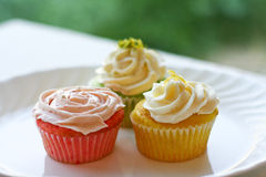Three colorful springtime cupcakes Stock Image