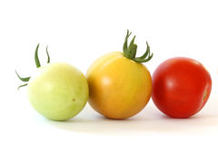 Three colorful tomatoes on white background. Close up view - row of three colorful - green, orange and red - tomatoes on white background Stock Photo