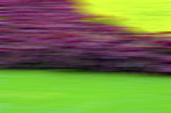 Three colors blurred Royalty Free Stock Photo