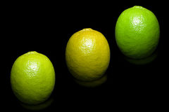 Three colors, lime on pure black background. Royalty Free Stock Images
