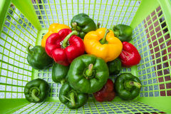 Three colors sweet peppers in a basket on the market. Royalty Free Stock Images