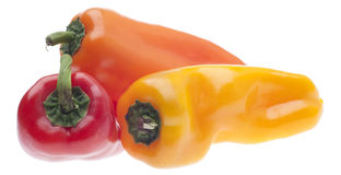 Three Colors of Vibrant Peppers Royalty Free Stock Photography