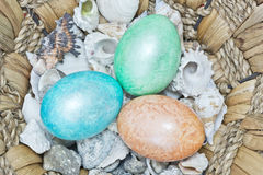 Three colourfull easter eggs with shells Stock Images