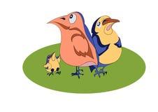 Three comical birds Royalty Free Stock Photos