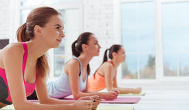 Three concentrated women doing a plank in gym Stock Photos