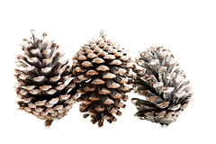 Three cones over white. Royalty Free Stock Image