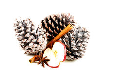 Three cones of a tree with cinnamon and spple slice. Stock Images