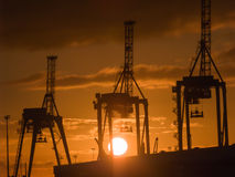Three container cranes silhouetted against rising sun Royalty Free Stock Photography