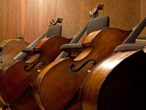Three Contra basses Stock Photography