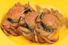 Three Cooked Crab Royalty Free Stock Images