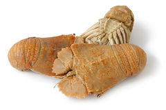 Three cooked flathead lobsters Royalty Free Stock Photo