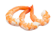 Three cooked unshelled tiger shrimps isolated on white backgroun Stock Images