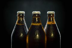 Three cool beer bottles on black Stock Images