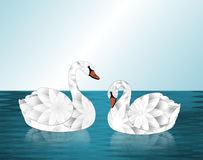 Two White Flower Swans on Lake Stock Images