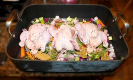 Cornish Game Hens on vegetables in Roasting Pan Ready to Cook. Three Cornish Game Hens on vegetables in Roasting Pan Ready to Cook Royalty Free Stock Images