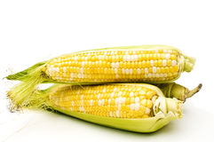 Three corns. Royalty Free Stock Photo