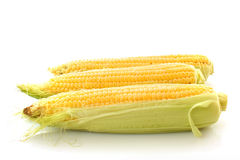 Three corns isolated Stock Photo