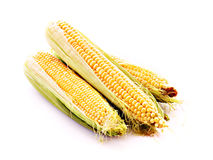 Three corns isolated Royalty Free Stock Photos