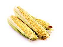 Three corns isolated Royalty Free Stock Photos