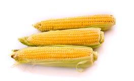 Three corns isolated on white Stock Photos
