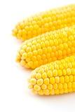 Three corns isolated on white Stock Photo