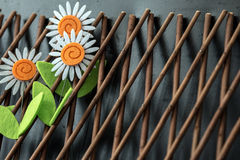 Three Daisy Flowers On Wooden Trellis. Three craft daisy flower embellishments on wooden trellis Royalty Free Stock Images
