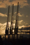 Three Cranes. Three dockland cranes silhouetted against a rising sun Stock Photography