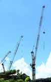 Three cranes. Three very high cranes are working Stock Photo