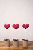 Three crocheted hearts in peat glasses Stock Photo