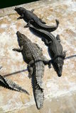 Three crocodiles Stock Photography