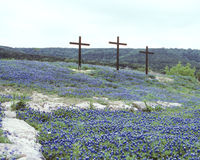 Three Crosses in Blue Bonnets. Rocks leading up to Three Crosses in the Blue Bonnets Royalty Free Stock Photos