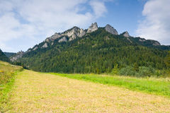 Three Crowns - Pieniny, Poland Stock Image